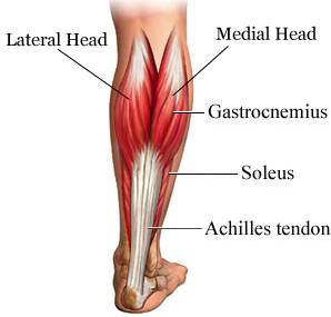 physio-brisbane-cbd-sports-injuries-achilles-tendon-exercises-png